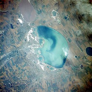 Lake Kulundinskoye - from space (August 1989)
