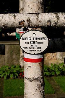 Tadeusz Kurkowski – Wikipedia, wolna encyklopedia