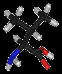L-valine-3D-sticks.png