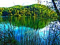 Lago di Monticolo - Photo by Giovanni Ussi - Lago Grande 45.jpg