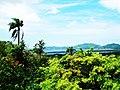 Lagoa da Encantada (vista do alto do morro) - panoramio.jpg