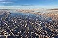 Lake Urmia 13970826 24.jpg