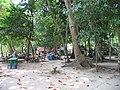 Lam Kaen, Thai Mueang District, Phang-nga, Thailand - panoramio (11).jpg