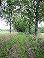 Landgoed Olthorst (31398625666).jpg