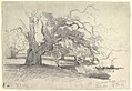 Landscape with Trees near a Pond MET DP820051.jpg