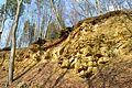 Landschaftsschutzgebiet Vorholzer Bergland - Steinbruch Langer Berg - Obere Jura (19).JPG
