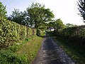 Lane past Swallow Cottage - geograph.org.uk - 421394.jpg