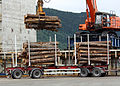 Lasting av tømmer på Hagland Borg (7649734514).jpg