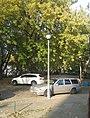 Latarnie na podwórku 2.jpg