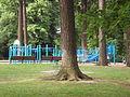 Laurelhurst Park playground.jpg