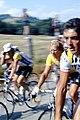 Laurent Fignon during Tour de France 1984.jpg