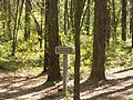 Leon Sinks Recreation Area - Hutchison's Spur sign.jpg