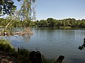 Lienewitz-Caputher Seen- und Feuchtgebietskette.jpg