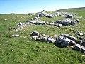 Limestone outcrop - geograph.org.uk - 426504.jpg