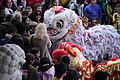 Lion Dance, Chinese New Year 2013 at the Crow Collection 22.jpg