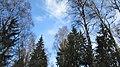 Lobnya, Moscow Oblast, Russia - panoramio (507).jpg