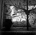 Locarno Smeedijzeren poort en trap waarop een kruik staat, Bestanddeelnr 254-4792.jpg