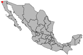 Location Tijuana.png