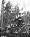 Logging crew and donkey engine, National Lumber and Manufacturing Company, ca 1920 (KINSEY 296).jpeg