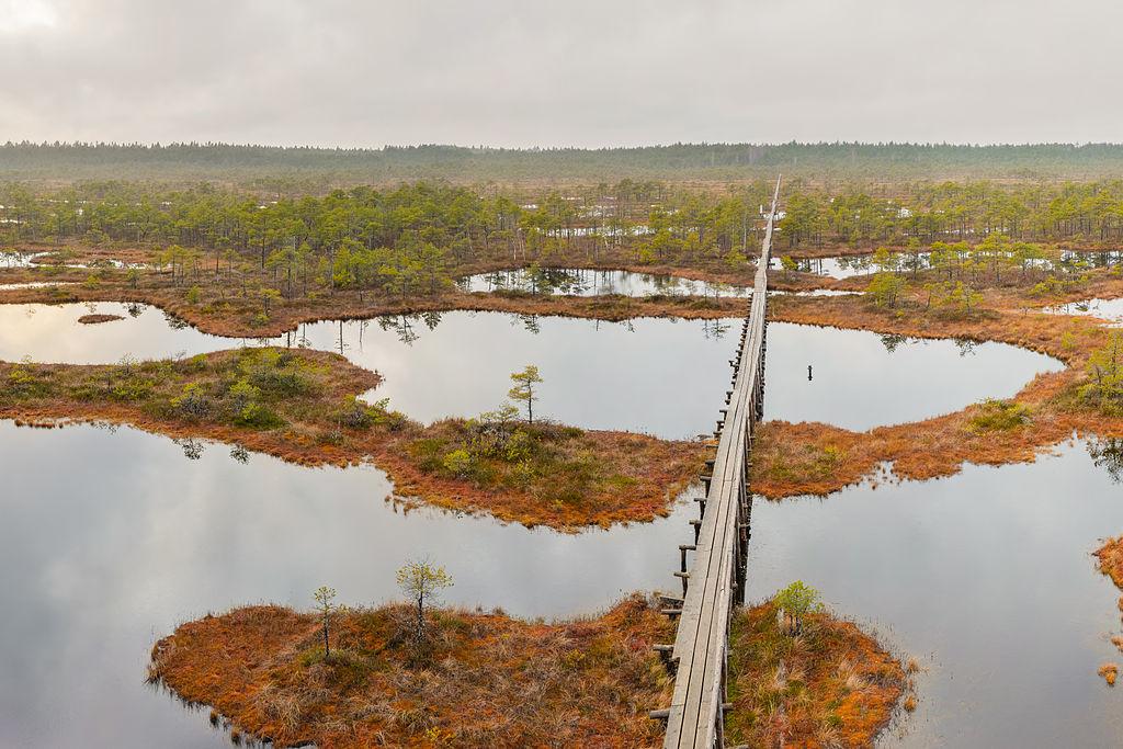"""Résultat de recherche d'images pour """"Endla Nature Reserve"""""""