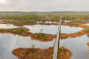 Protected areas of Estonia - Endla Nature Reserve