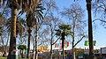 MacArthur Park, Los Angeles, CA, USA - panoramio (23).jpg