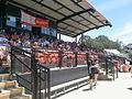 Main Stand, Narrabundah Ballpark, Canberra.jpg