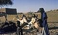 Mali1974-121 hg.jpg
