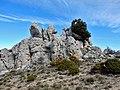 Malla de Llop from Famoca hike (26825776622).jpg