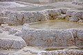 Mammoth Hot Springs detail 4.jpg