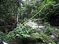 Mandin River Kotabaru - panoramio.jpg