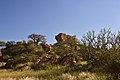 Mapungubwe, Limpopo, South Africa (20356024018).jpg