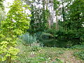 Mare au jardin agronomique tropical.JPG