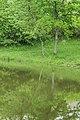Mare de Mezeilles 06.jpg