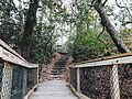 Mason's Bill of Flights - of Stairs (32684960651).jpg