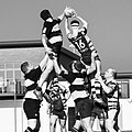 Melbourne RFC 3XV playing at home in front of the new pavilion.jpg