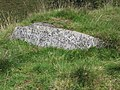 Memorial Stone on top of Long Barrow - geograph.org.uk - 527452.jpg