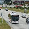 Metrobus Panama.jpg
