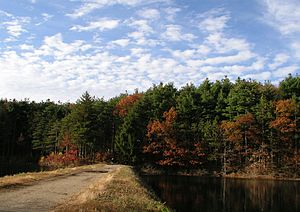 Middlesex Fells, between South and Middle Rese...