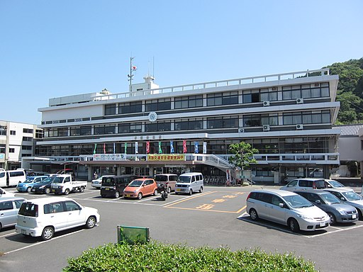 Minamata City Hall 20110514