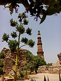 Minar.jpg