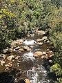 Mine Creek upstream.jpg