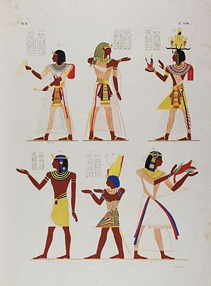 Ippolito Rosellini - Page from I Monumenti dell'Egitto e della Nubia showing depictions of kings of Egypt, from an original at the Bodleian Libraries