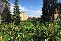 Moscow, Kutuzovsky prospect 38 trees (31028607860).jpg