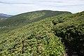 Mt.Byobudake (Zao) 04.jpg