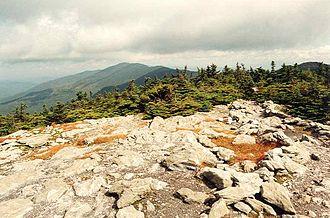 Mount Ellen (Vermont) - Mount Ellen seen from Mount Abraham