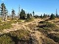 Mumlavská hora.jpg