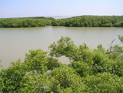 A view of the lagoon and the ocean beyond