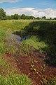 NSG Recker Moor Bardelgraben 03.JPG