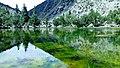 Nalter Jheel Gilgit Baltistan.jpg